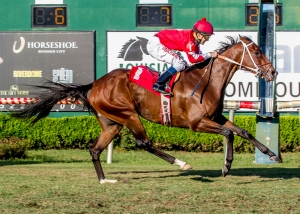 Rock N Sake with jockey Jansen Melancon aboard captures the 22nd running of the A.L. (Red) Erwin Stakes at Louisiana Downs.  Hodges Photography